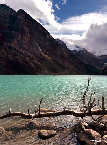 Rays on Lake