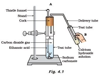 Class 10 Important Questions for Science – Carbon and Its