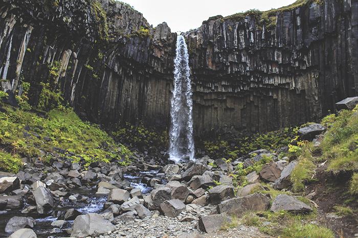 Iceland_Spiegeleule_August2014 056