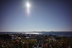Photo:_DSC5436_ff.jpg By sunoochi