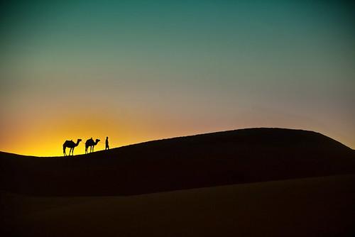 travel sunset sun art sahara colors silhouette sunrise print poster landscape sand desert morocco gilad giladbenari