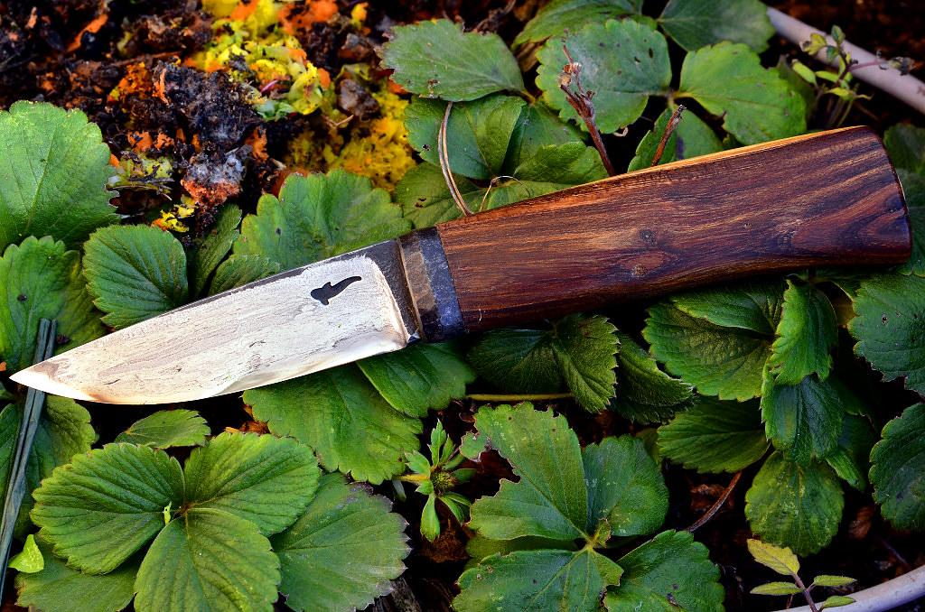 Des traces de couteaux dans les bois 16230942782_eb6cbe1a6a_b