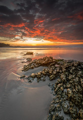 Sunset at Carmel Beach - Carmel, CA