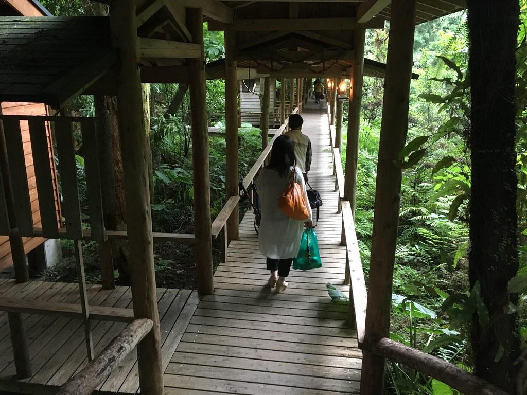 ロッジの緑溢れる渡り廊下