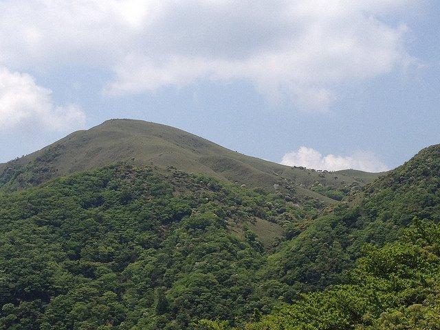 竜ヶ岳 金山尾根より山頂