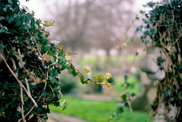 Highland Road Cemetery - Southsea - Jan 2016
