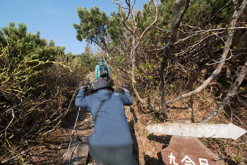 20150614-北海道羊蹄山(2日目)-0454.jpg