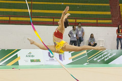 athletics(0.0), high jump(0.0), floor gymnastics(1.0), sports(1.0), gymnastics(1.0), rhythmic gymnastics(1.0),
