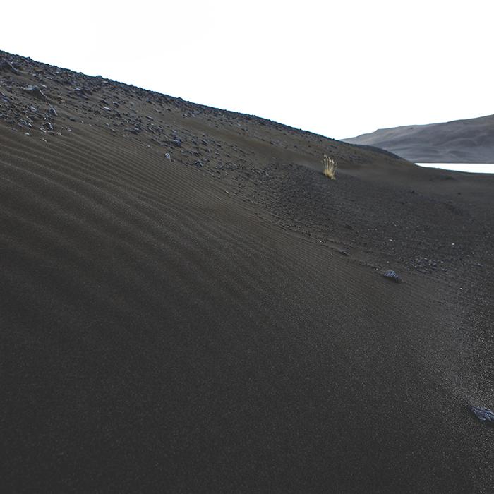 Iceland_Spiegeleule_August2014 160