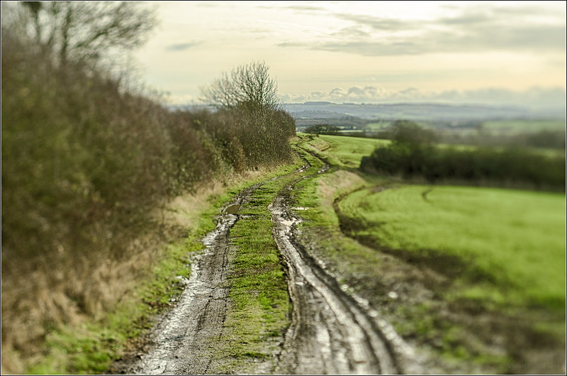 Tilted Muddy Lane (uncropped)