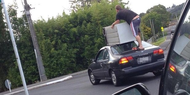 car surfing in Auckland