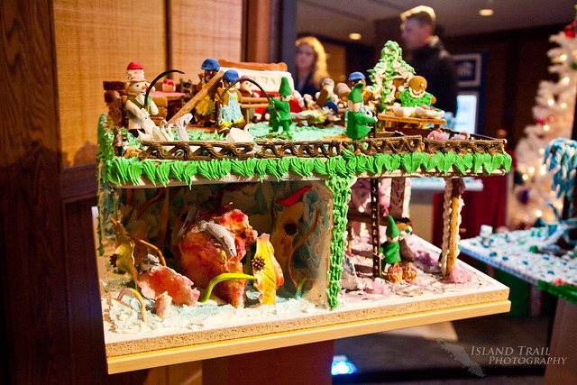 Gingerbread Display - 2014.12.19-9491