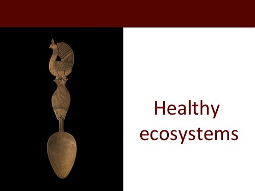 Slide 31: ILRI 2014 one-health presentation