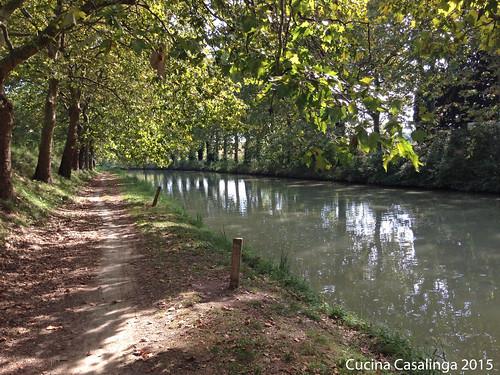 Canal du Midi 1