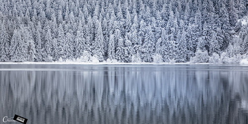 winter lake snow france reflection canon hiver lac reflet neige sapin puydedôme 6d réflexion enneigé lacservière chassamax jesuischarlie