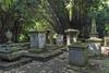 Bogor Kebun Raya 2014 413