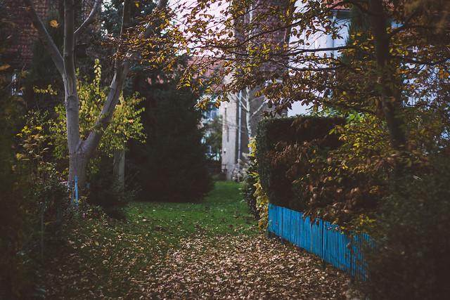[242] Autumn