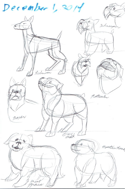 12.1.14 - National Dog Show Sketches