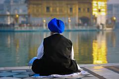 Inde du nord 2014: pélerin Sikh au temple d'or à Amritsar.