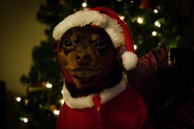 christmas2014twenty