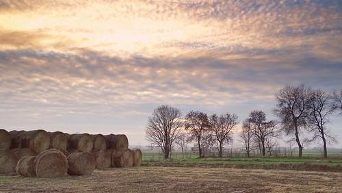 trees sunset sky cold nature clouds landscape colours view poland polska fields lodzkie łódzkie parkkrajobrazowywzniesieńłódzkich lodzhillslandscapepark