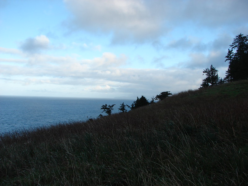 Cape Lookout from the meadow near Harts Cove