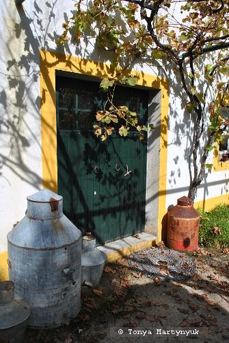 52 - отели в Каштелу Бранку - ферма ремесленников