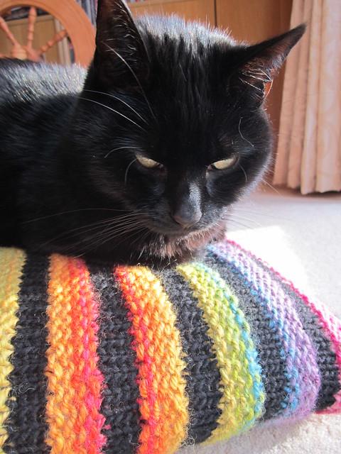 Wurmy rainbow cushion (19)