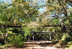 Haw Creek Rd Bridge over Cummins Creek 1411181052