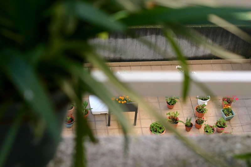 balcón_8_20141222 - Version 2