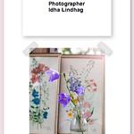 Idha Lindhag Photography