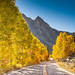 Fall Foliage Road by Anthony Quintano