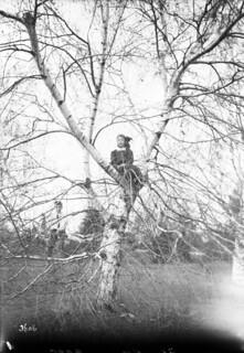 Children pose for a picture in a tree during holiday time, Central Experimental Farm, Ottawa / Une enfant prend la pose dans un arbre pendant les vacances à la Ferme expérimentale centrale d'Ottawa