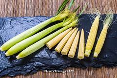 Harry_22129,玉米筍,玉米,甜玉米,珍珠筍,�…