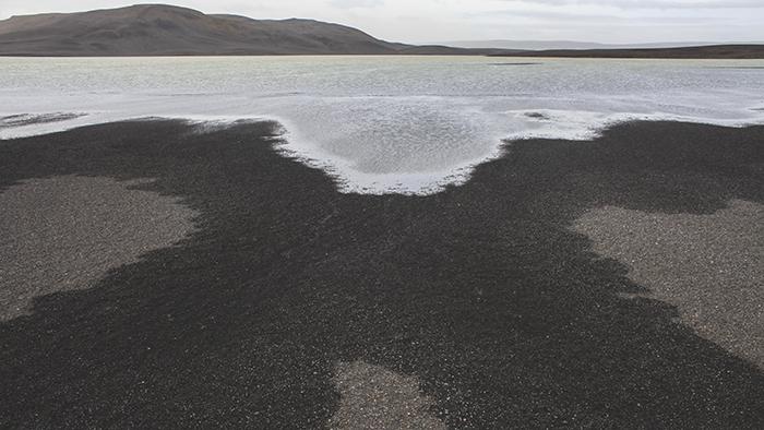 Iceland_Spiegeleule_August2014 157