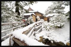 日本京都-金閣寺-雪.56