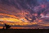 Waterman Farm sunrise