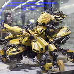 GBWC2014_World_representative_exhibitions-11
