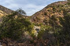 Kings Canyon & Sequoia - 419