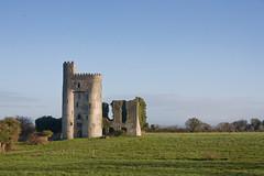 Ballyadams Castle 2