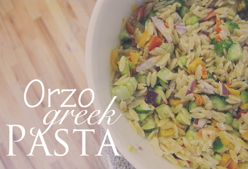 orzo greek pasta