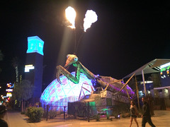 You can't take a bad photo of a Fire-Breathing Mantis @DTContainerPark