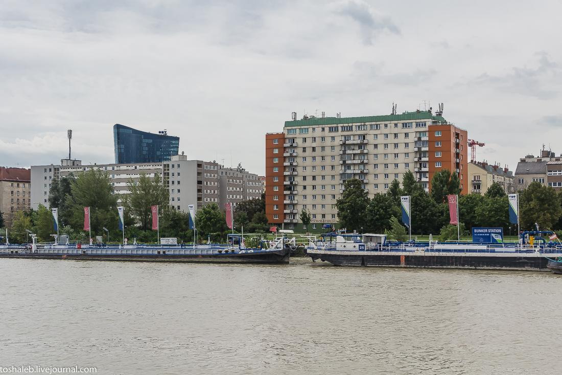 Венский Дунай-61