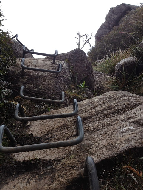 bars to platform - the Pinnacles