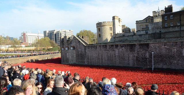 Remembrance day 12