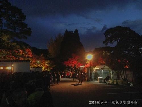 2014京阪神-永觀堂夜間拜觀1876_001