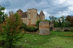 Rhône - Château d'Arginy à Charentay