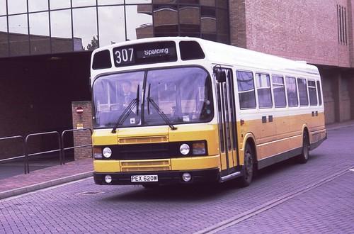 Ley Nat  654