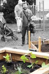Planter box for urban Fawkner IMG_9469-2000x3000-planter-box