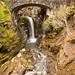 Mt Rainier by John Rudolph Photography